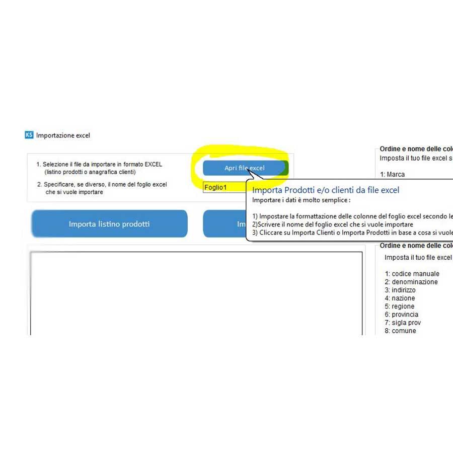 4-Importazione-da-file-excel-dei-clienti--servizi-e-o-prestazioni-professionali-prodotti-2
